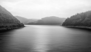 Black and white landscape of foggy lake surrounded by trees
