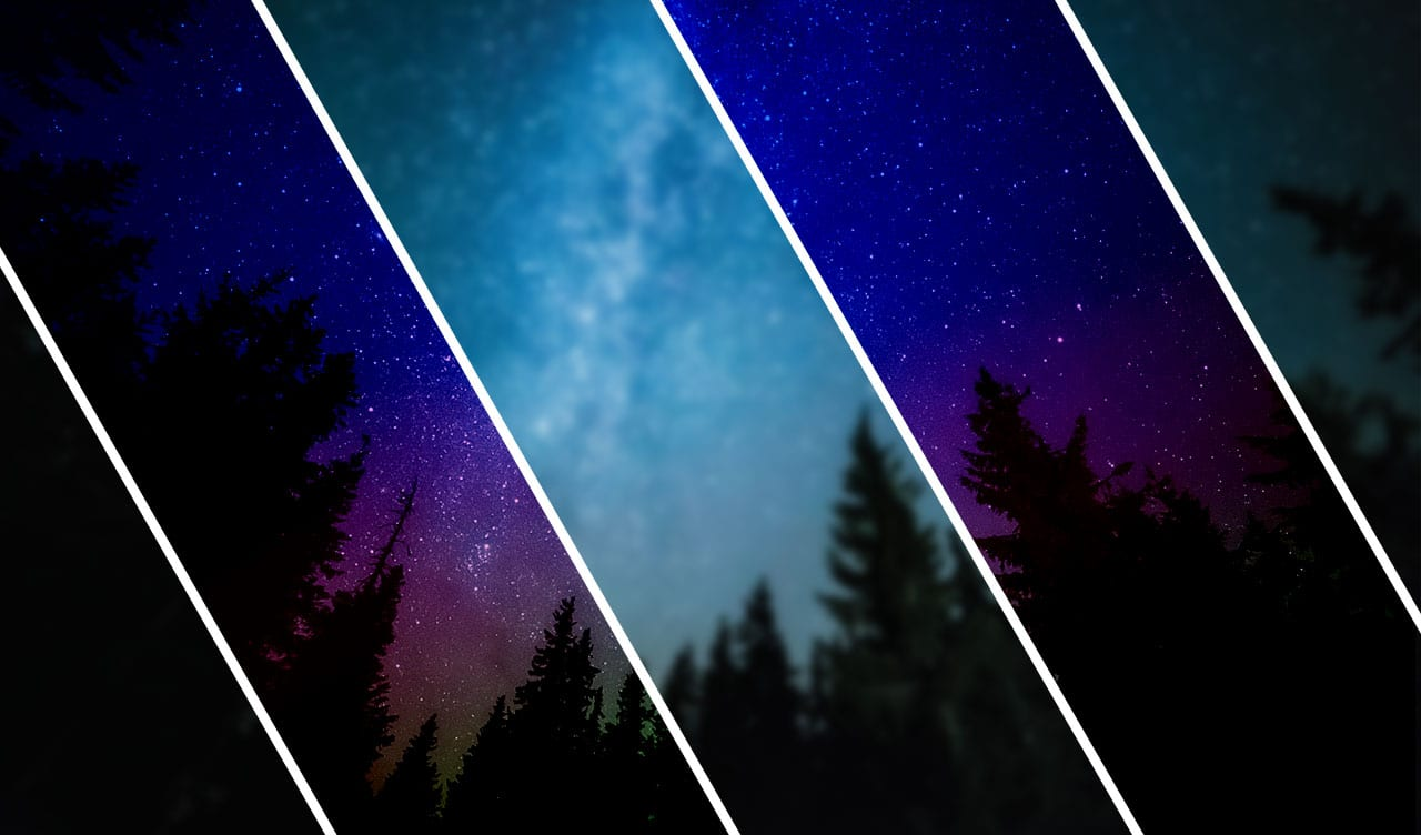 Stars above forest